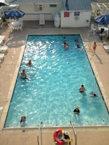 A view of the pool at Thunderbird Beach Motel or nearby