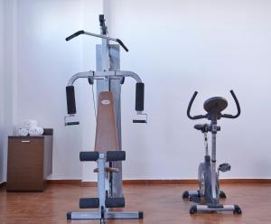 The fitness center and/or fitness facilities at Terra Blue Santorini
