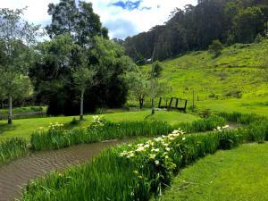 A garden outside Pennyroyal Otways Retreat