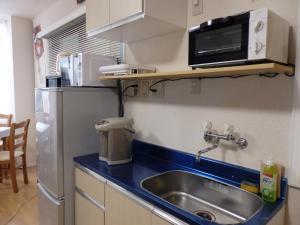 バックパッカーズミニハウスにあるキッチンまたは簡易キッチン