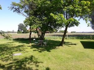 Ein Garten an der Unterkunft Hofgut Bockelkathen