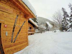 Chalet Alpina Hotel & Apartments during the winter