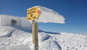 Alpine Aria during the winter