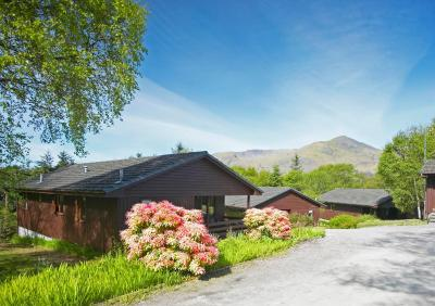Birchbrae Lodges - Laterooms