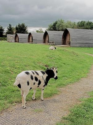 Wall Eden Farm - Laterooms