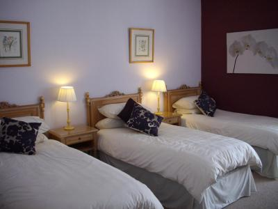 Dynevor Arms - Laterooms