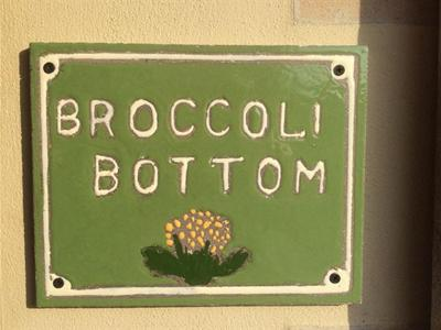 Broccoli Bottom - Laterooms
