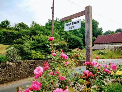Wellington Farm Guesthouse & TeaRoom - Laterooms