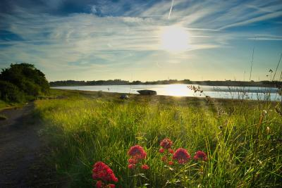 Shard Riverside - Laterooms