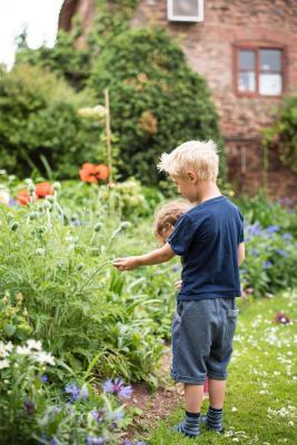 Huntstile Organic Farm - Laterooms