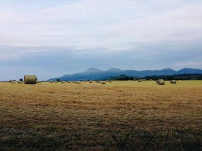 Yew Tree Barn - Laterooms