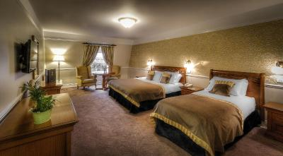 Celbridge Manor Hotel - Laterooms
