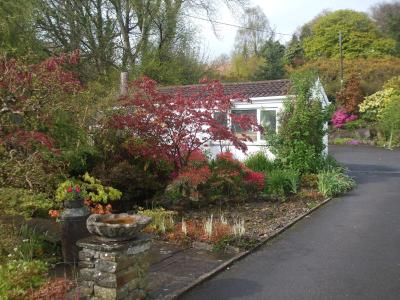 Cwmbach Guest House - Laterooms