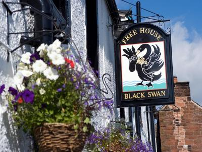 Black Swan - Laterooms