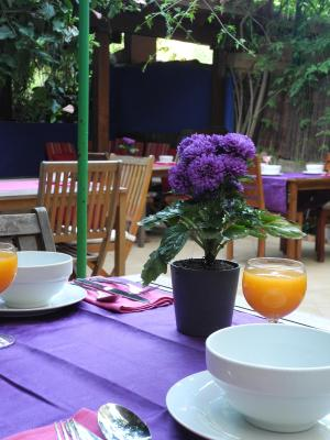 Casa Bougainvillea - Laterooms
