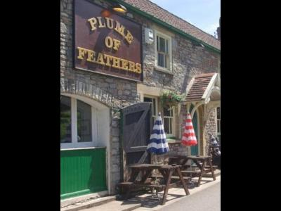 Plume of Feathers - Laterooms