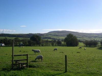 Pickersgill Manor Farm - Laterooms