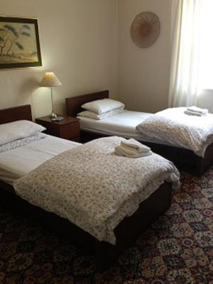 Black Lions Guesthouse - Laterooms