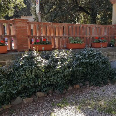 Villa Alle Rampe - Laterooms