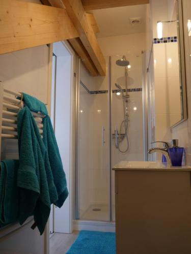 A bathroom at Aparthouse Haas41