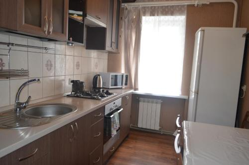 Кухня или мини-кухня в Apartment Zheleznodorozhnaya 4