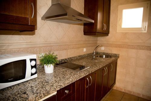 Кухня или мини-кухня в Apartamentos Vista Real