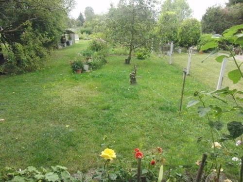 Ein Garten an der Unterkunft Ferien-Apartment mit Gartenblick