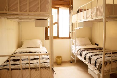 A bunk bed or bunk beds in a room at Tamraght Surf Hostel