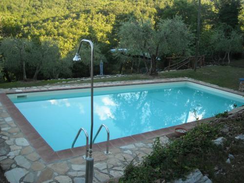 Piscina di Villa Capannuccia o nelle vicinanze