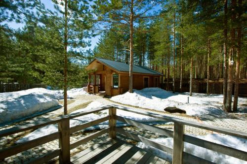 База Отдыха в сосновом лесу Семиозерье зимой