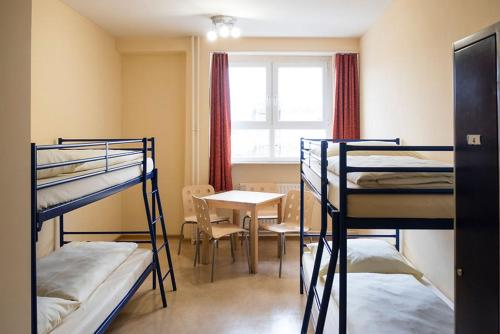 A bunk bed or bunk beds in a room at Hostel Haus international
