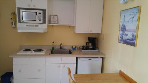 A kitchen or kitchenette at Tulip Inn