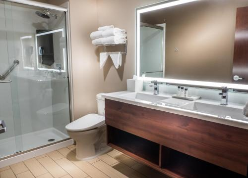 A bathroom at Skyline Hotel and Casino