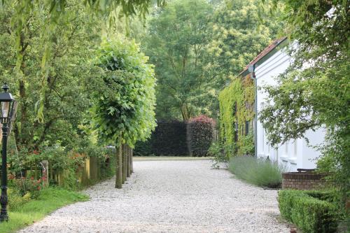 Een tuin van Wijnhoeve Koningbosch