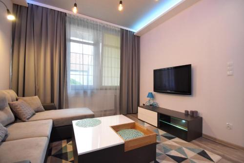 A television and/or entertainment center at MNE Apartament