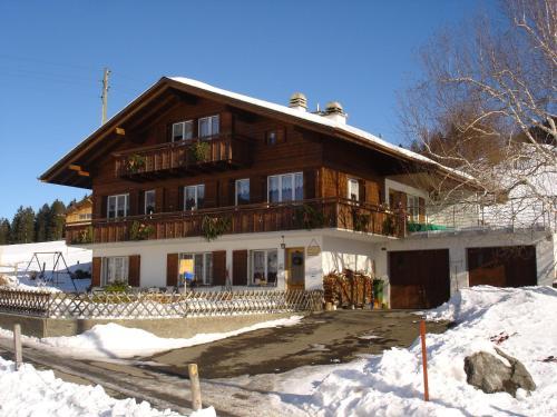 Chalet Sunneschyn im Winter