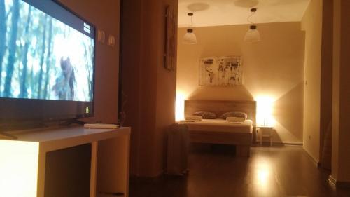 TV i/ili multimedijalni sistem u objektu Top Apartment