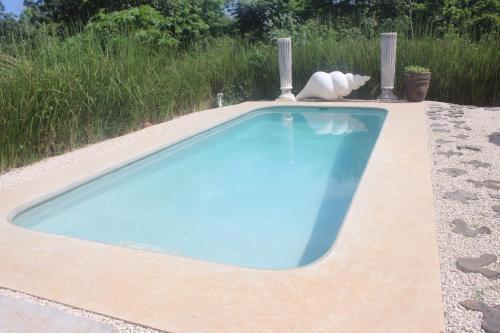 The swimming pool at or near Barba Negra Lodge