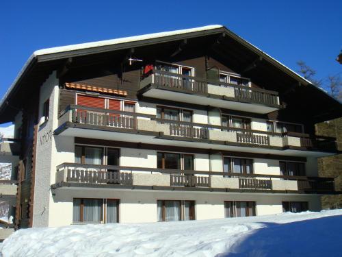 Amor Lodge im Winter