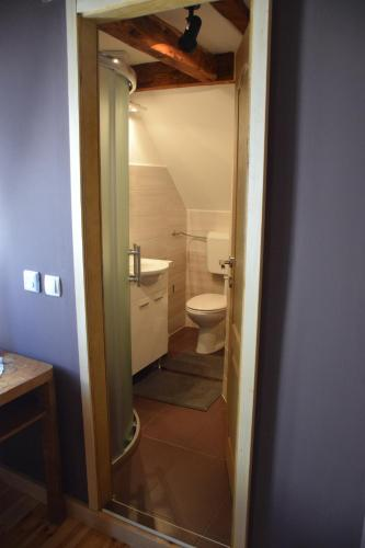 Kupaonica u objektu Guesthouse Kranjac