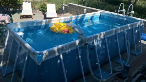 Бассейн в Guest House Delphini или поблизости