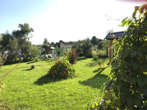 Сад в Гостевой Дом Улейма