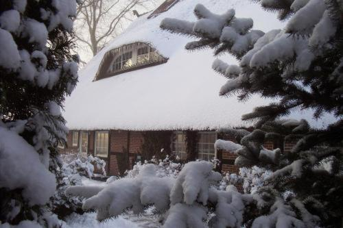 Heidehof Moraas im Winter