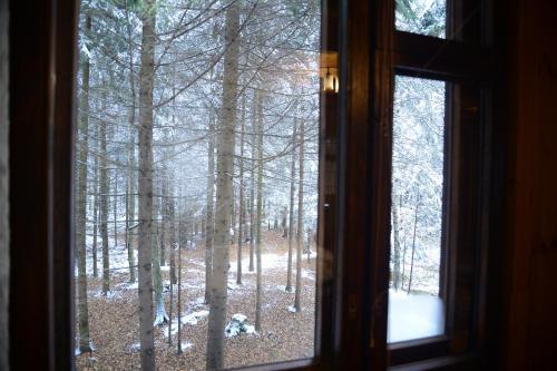 Guest house Aviator зимой