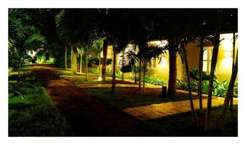 A garden outside Oasis Hotel