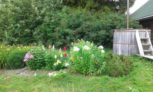 Сад в Auru Cīruļi