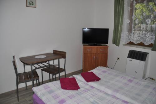 TV a/nebo společenská místnost v ubytování Privát Magdalena