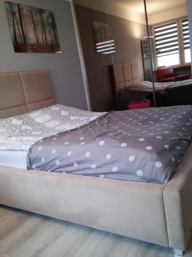 A bed or beds in a room at Przytulna kawalerka