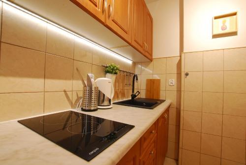 Kuchnia lub aneks kuchenny w obiekcie StayLikeHome Lux Apartment Zakopane