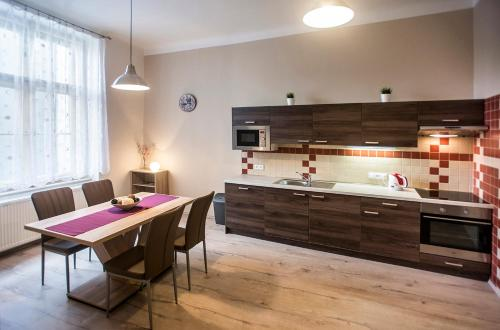 A kitchen or kitchenette at Charles IV Apartments